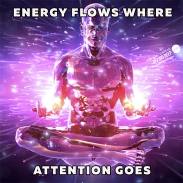 Energy-Flows-Attention-Goes