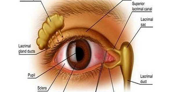 Improve-Eyesight-With-Vitamin-Bomb