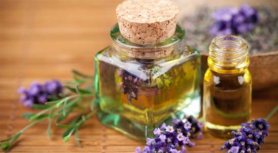 Essential Oils Antibiotics