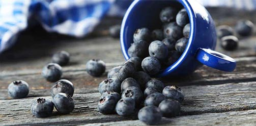 Why Blueberries Could Be The Best Thing to Ever Happen to You