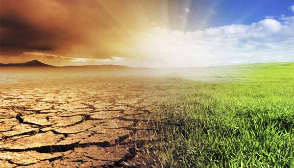 Doctors Urged to Take Action on Climate Change